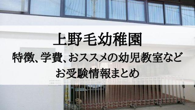 上野毛幼稚園 倍率 アクセス 学費