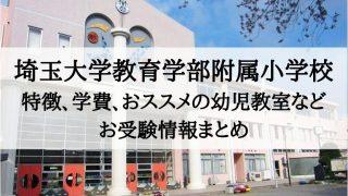 埼玉大学教育学部附属小学校 倍率 学費