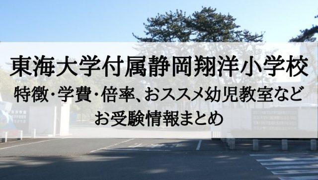 東海大学付属静岡翔洋小学校
