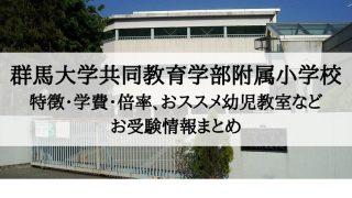 群馬大学共同教育学部附属小学校